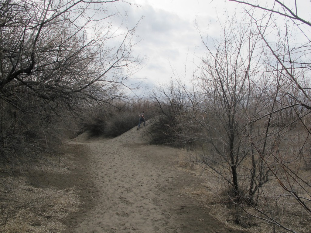 Trail to the tallest sand dune