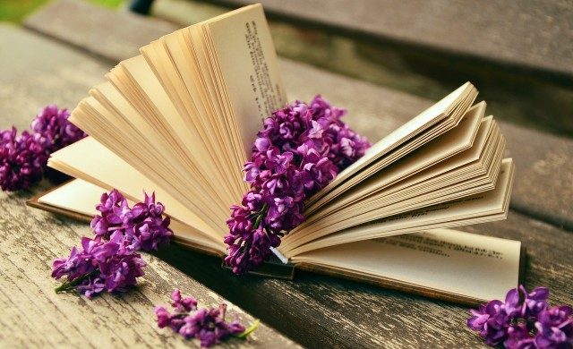 books lilacs reading