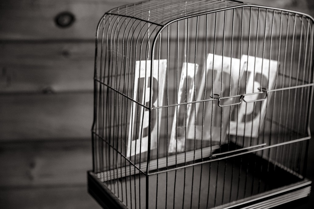 bird word cage showing vs telling